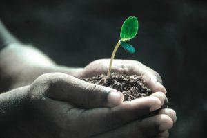La responsabilidad financiera contra la culpa y la queja